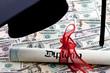 Dollar Geldscheine und Diplom