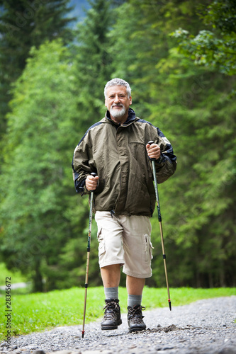 active handsome senior man nordic walking outdoors on a forest p
