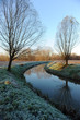 sile paesaggio 1384