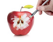 Male hand painting a red fresh apple revealing the inside