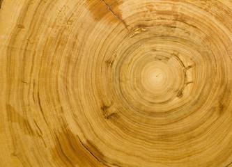 Wood grain background texture
