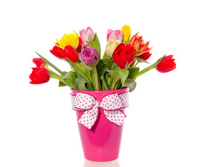 cheerful mixed tulip bouquet in a pink vase with ribbon isolated
