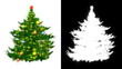 The image of fir-tree with the alpha channel