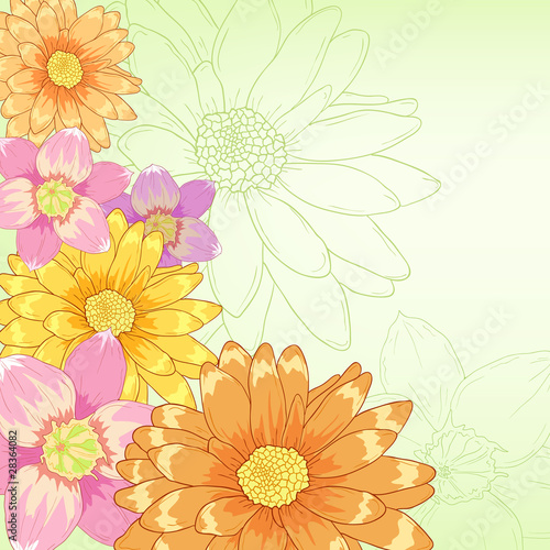 Vector hand drawn flowers with green background