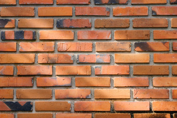 Red Brick wall with partial morning sun light