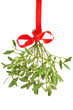 Mistletoe isolated - 28389455