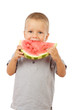 Little boy eating watermelon, studio shoot