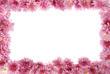 floral frame on white