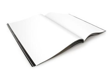 Blank Magazine Spread - Left Page