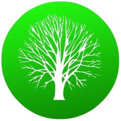 umwelt   icon . natur grün baum