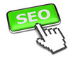 Search Engine Optimization button