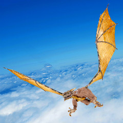 dragon snatching on the sky