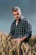 Farmer has care of his wheat field