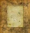 Grunge blank photo