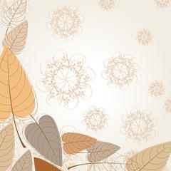Vector elegant autumn leaves illustration