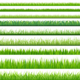 Big Set Grasses - 28437816