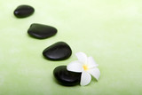 Spa stones and tropical frangipani flower