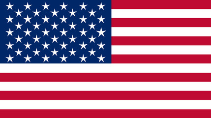 The USA nation flag