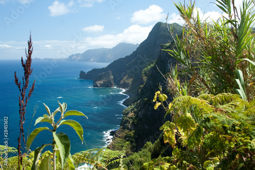 canvas print picture Madeira, north-east coast near Santana