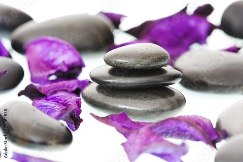 pétalos aromáticos y piedras