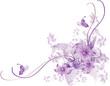 abstract flower Illustration vector spring summer pink