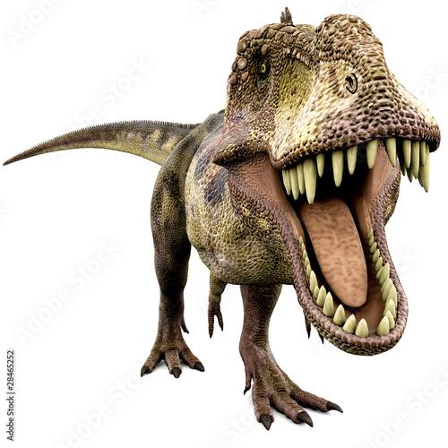 Leinwanddruck Bild tyrannosaurus looking for food