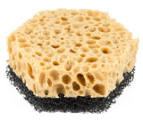 China sponge on a white background