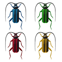Multicolored beetles on white background - vector file