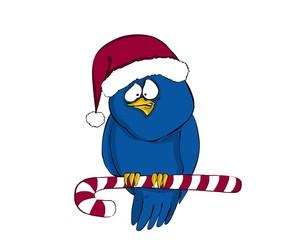bird, birds, tweet, Christmas, Candy
