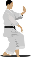 Karate. The sportsman in a position. Oriental combat sports.