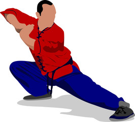 Wushu. KungFu.The sportsman in a position. Oriental combat sport