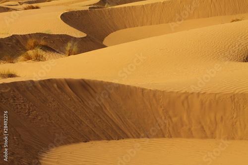 sahara-maroko