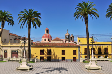Colorful Square with Palms