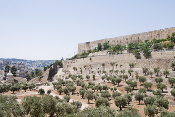 Kidron Valley, Temple Mount and Tomb of Absalom
