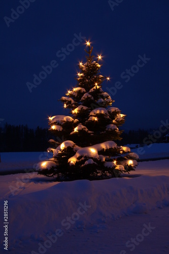 weihnachtsbaum beleuchtet von turi lizenzfreies foto. Black Bedroom Furniture Sets. Home Design Ideas