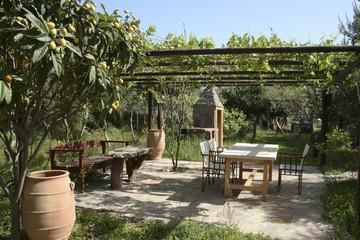 Loquat tree in beautiful cretan garden - Crete