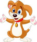 Fototapety Cute Puppy raising his hands