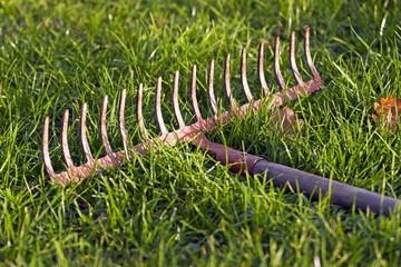 Iron rake