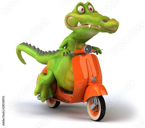 Crocodile et scooter