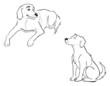 Labrador dogs outline