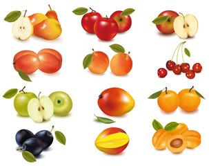 Big group of sweet fruit. Vector.