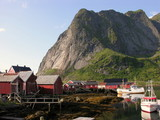 Lofoten Houses over a river poster
