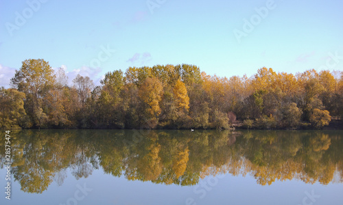 Golden trees in autumn reflected in a calm river
