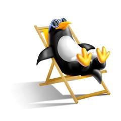 pinguino in spiaggia