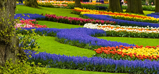 Colorful borders with springflowers in the park