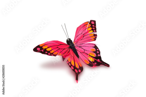 decorative butterfly on a white background