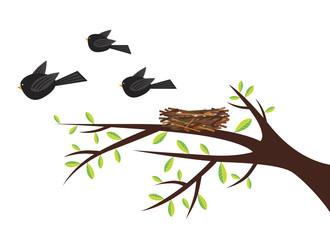 Birds leaving nest