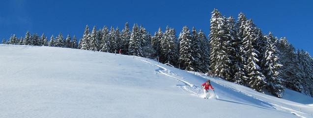 Panorama - Skifahrerin im Tiefschnee