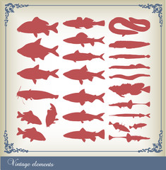 Vector set of fishes