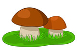 Two mushrooms with green grass